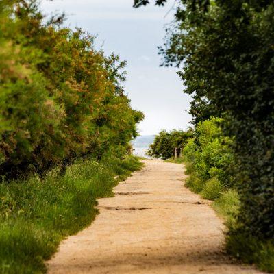 chemin de randonnée audenge